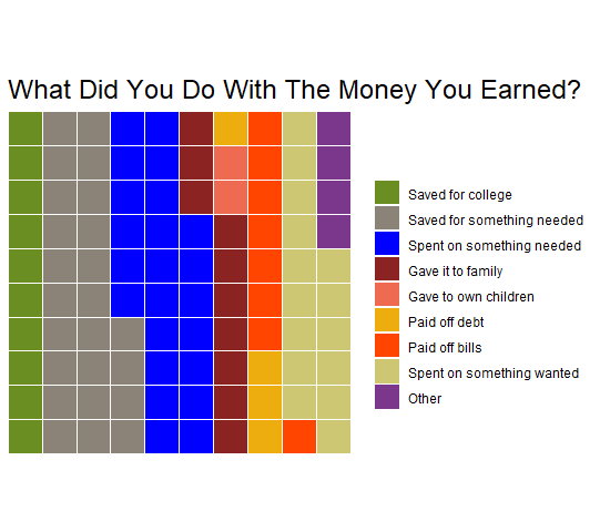 What did you do with the money you earned? (chart)